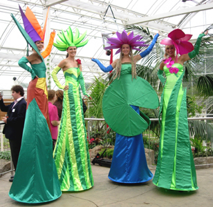 Think, that adult tree costume with stilts what