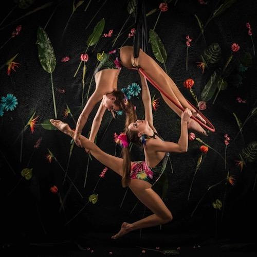 Amazon Circus  - Enchanted Forest Show - Trapeze Duo