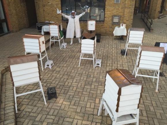 Bees - Installation of Multiple Hives - Interactive Entertainment