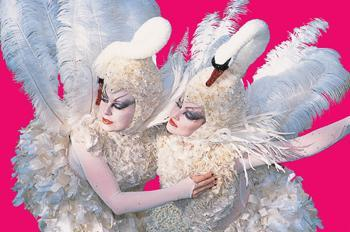 Bolli Darling - Sumptuous Swans - Stilt Walkers - Walkabout