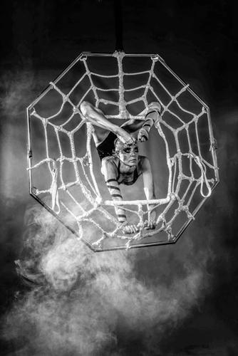 Spider - Aerial Contortion Freak Show - Circus Entertainer